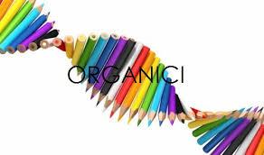 Dotazioni organiche dirigenti scolastici - A.S. 2018/2019
